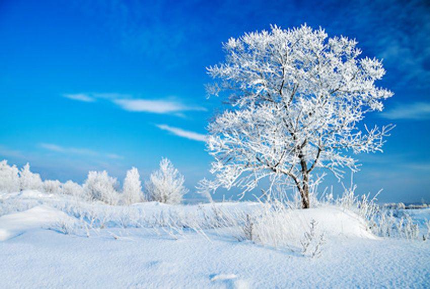 Wetter-Rückblick Dezember
